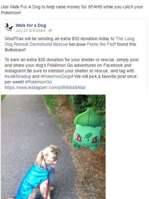Pokemon Go players can use the miles they track while playing to donate to animal shelters.