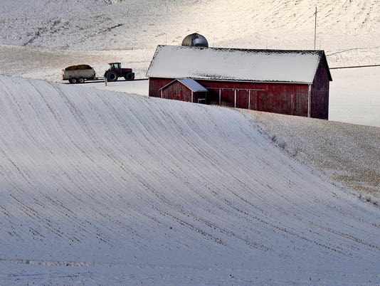 635581509275478324-FON-121012-first-snow-3