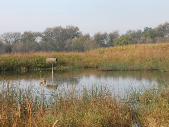 A wildlife pond is an option under CRP.