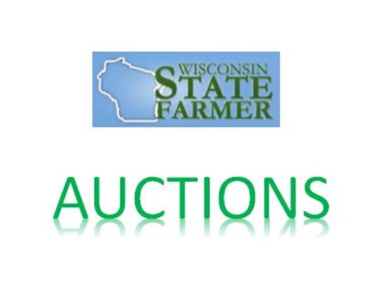 auction-pic.JPG