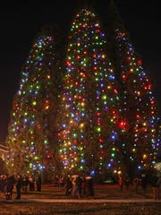 The last time the lights were on at the Star Trees