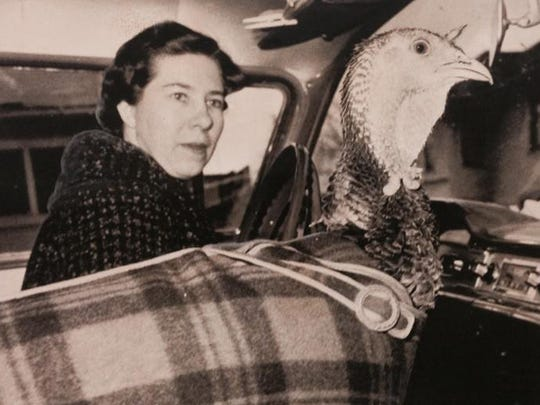 From 1961: June Jacobs of Cedar Falls and her plaid-wearing pet turkey Buttercup.