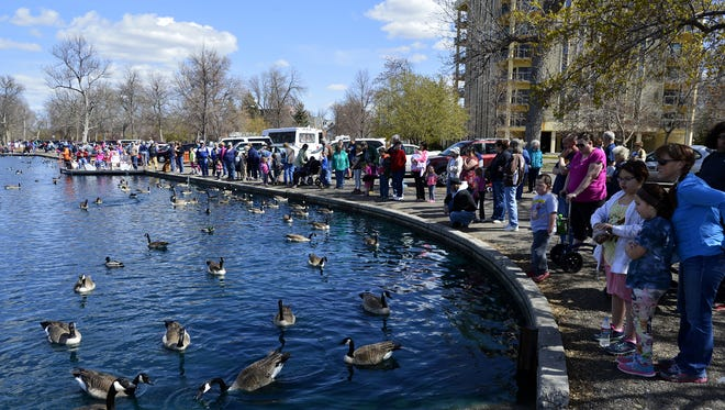 A crowd gathers at Gibson Park to feed the waterfowl. Gibson Park is one of 57 developed parks that would receive maintenance funding through a proposed Park District if approved by the Great Falls City Commission