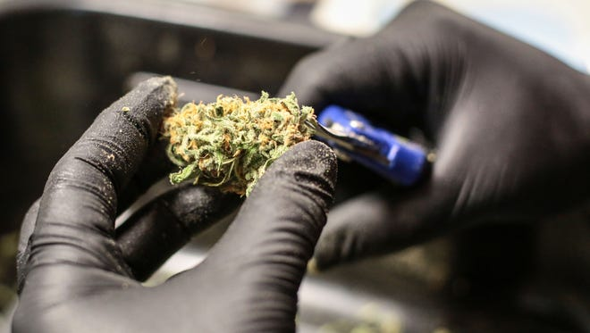 A worker processes a marijuana flower at the MedMen cultivation facility in Sun Valley near Los Angeles, on Tuesday, November 15, 2016.