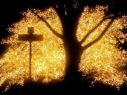 "At its prime, the dogwood tree at the corner of Grant Drive and George Street -- Hanover's ""wish tree"" -- was wrapped in 333 strands of lights."