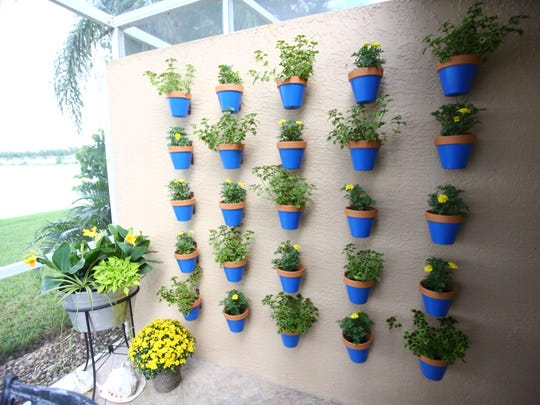 Holly Smith utilizes the vertical space and containers in her small backyard patio in East Naples to pot more plants.
