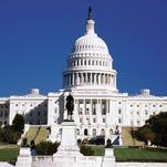 webart,trade, federal government, washington dc, washington, politics, politicians, term, term limits