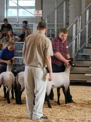 Wisconsin State Fair and other national exhibitions
