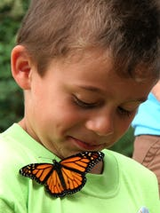 Campers release butterflies at Camp Mighty Oaks, Willamette Valley Hospice?s summer camp for families who have lost a loved one. This year the camp will be held Saturday, July 26, 2014.