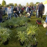 Gardeners mark their calendars every year for the Master Gardeners Plant Sale, so get there early and expect a crowd.