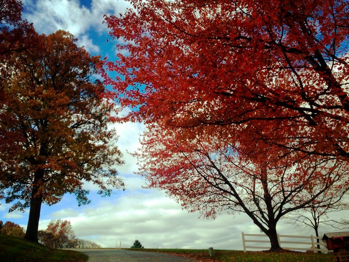 An autumn landscape is seen Friday, October 30, 2015