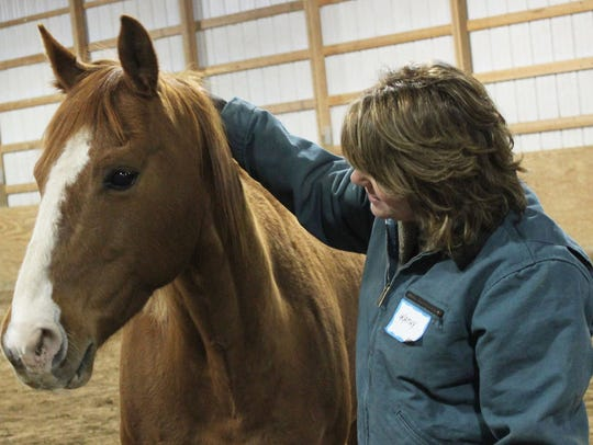 Sargent, a rescued horse, is used for therapy at the