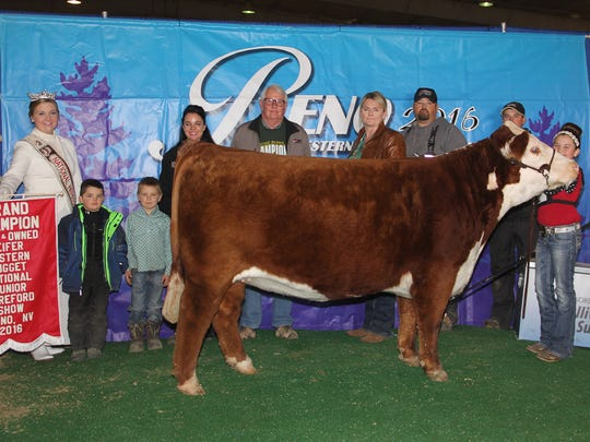 Winning the champion bred and owned heifer title was
