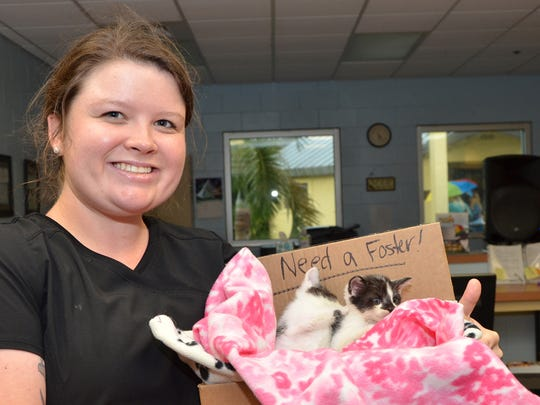 Doreen Poreba  Morgan Horn, a Humane Society of the Treasure Coast veterinarian technician, shows off a pair of kittens in need of a foster home at the recent Kitty Catalina Wine Mixer to benefit the shelter animals.
