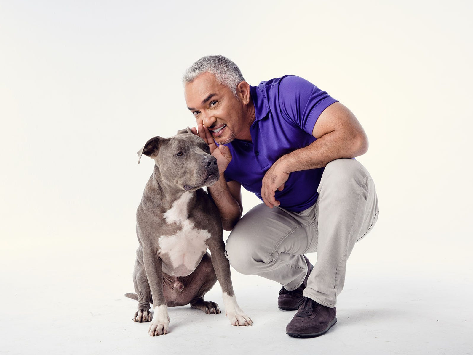 Insiders can enter to win tix to tickets to Cesar Millan Live 2/8-2/19.