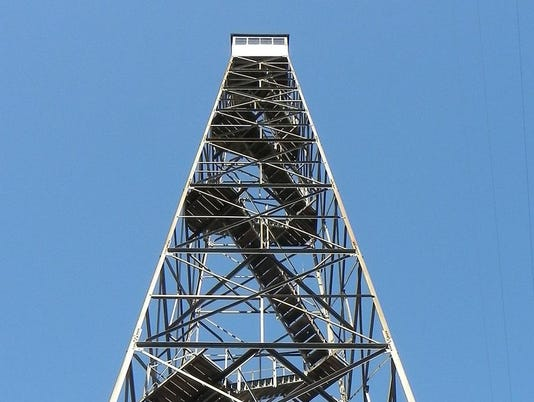 636606988856825508-puppy-tower.jpg