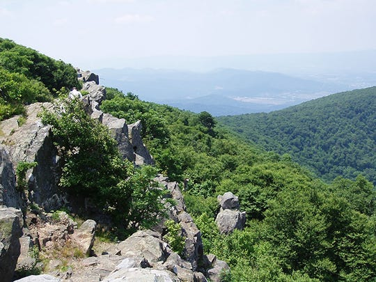 Along the spine of Hawksbill in the Shenandoah National Park.
