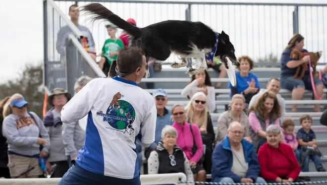 Hundreds of dogs, as well as their two-legged companions, visited Riverside Park in Vero Beach on Saturday, January 20, 2018 for the sixth annual Bark in the Park, a fundraiser for the Humane Society of Vero Beach and Indian River County.