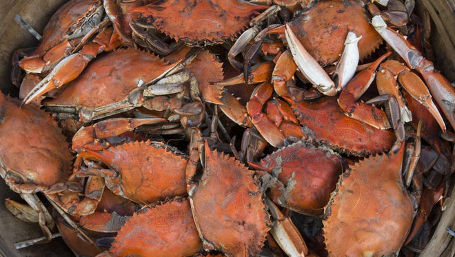 Crabs, clams, corn, and politics were served up at the 38th annual J. Millard Tawes Crab & Clam Bake in Crisfield.