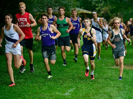 Local high school teams competed in the Enos Yeager Invitational on Friday, September 1, 2017 at the Falling Spring School course.