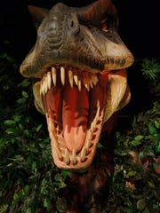 Is T. rex happy or hungry that it's on display in 'Dinosaurs Unearthed?'