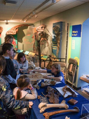 See fossils galore and even live dinosaur descendants at Paleopalooza at the Academy of Natural Sciences in Philadelphia.