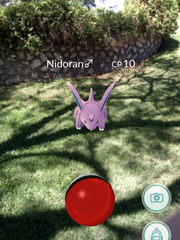 A Pokémon Nidoran character is shown at the El Paso Historical Society headquarters at the Burges House, 603 W. Yandell Drive. Pokémon characters can be found at many places around El Paso, including the El Paso Zoo.