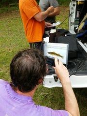 TVA biologist Jeff Simmons photographs a Tennessee Logperch.