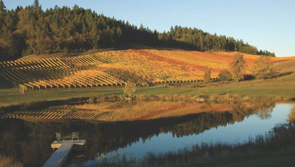 Reustle Prayer Rock Vineyards in Roseburg is one of