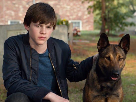 Justin (Josh Wiggins) adopts his brother's dog (played