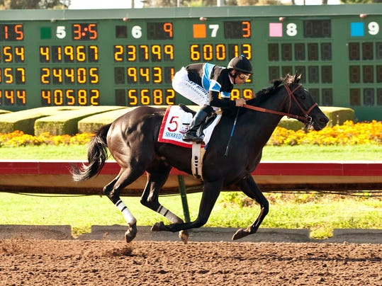 In a photo provided by Benoit Photo, Shared Belief and jockey Mike Smith win the first running of the Grade II, $500,000 Los Alamitos Derby horse race, Saturday, July 5, 2014, at Los Alamitos Race Course in Cypress, Calif. (AP Photo/Benoit Photo)