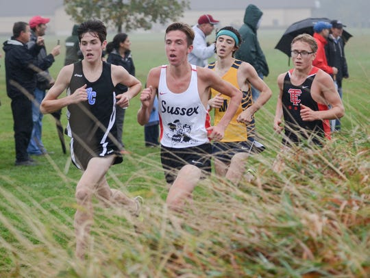 Blake Boles of Brookfield Central (from left), Michael Swope of Sussex Hamilton, Nolan Kozinski of Marquette and Henry Wellenstein of Wauwatosa East run in a pack near the front of the field