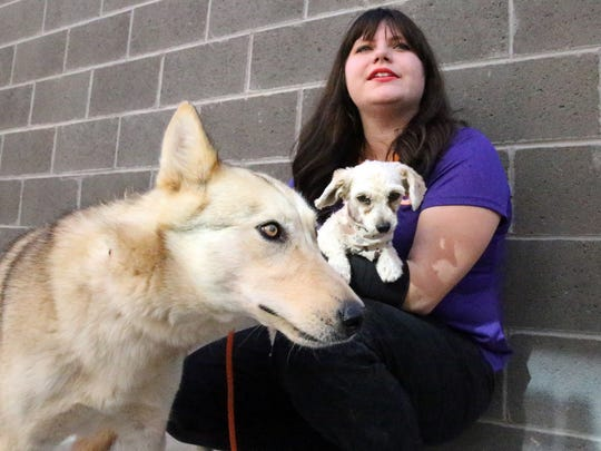 Michele Anderson, public affairs specialist with the city's Animal Services holds a bonded poodle and husky mix she said had to be adopted together.