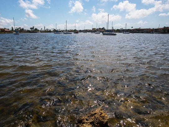 A view of Bimini Basin near Downtown Cape Coral on