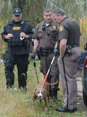 Deputies seize a dog on Division Drive.