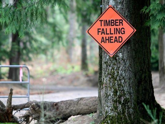 A sign warns of logging operations at South Kitsap Regional Park.