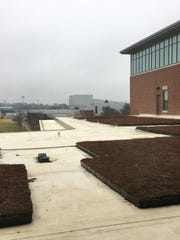 Plants cover portions of the roof at Rowan University's