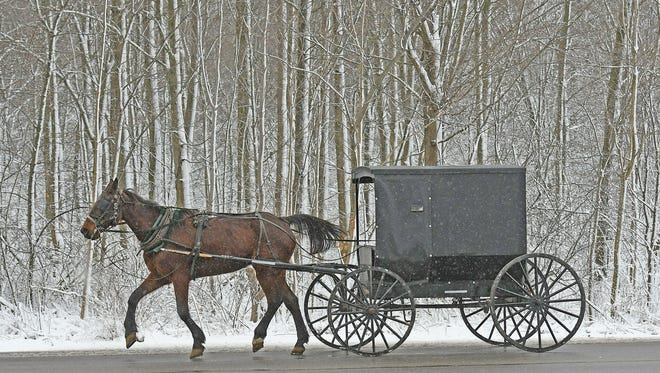 A horse-drawn buggy moves up Sandusky Street near a snowy, wooded area in Ashland on Friday morning.