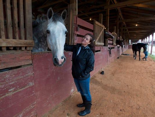 636407317197852330-horses12.jpg