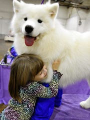 Raina McCloskey, 6, of Delta, hugs Why, her 15-month-old samoyed, in Memorial Hall during the 2016 Celtic Classic Dog Show at the York Fairgrounds in York City, Wednesday, March 16, 2016. Dawn J. Sagert photo