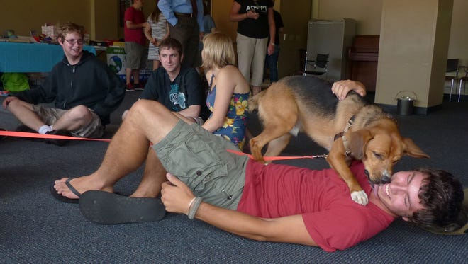 A student gets a sloppy kiss from a dog from Animal Care Sanctuary on Thursday at Mansfield University.