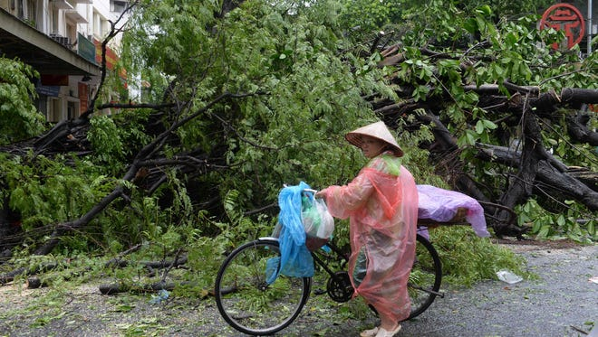 File Picture - a street vendor with a bicycle walks past a fallen tree on a street following the passage of Typhoon Mirinae which pounded northern Vietnam, in Hanoi on July 28, 2016.