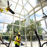 The geese sculptures in the atrium of GSP airport donned construction vests for the early stages of the terminal renovation project. They have since been removed and are in storage.