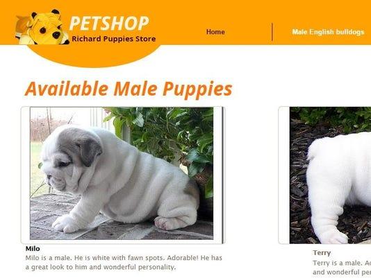richard puppies store