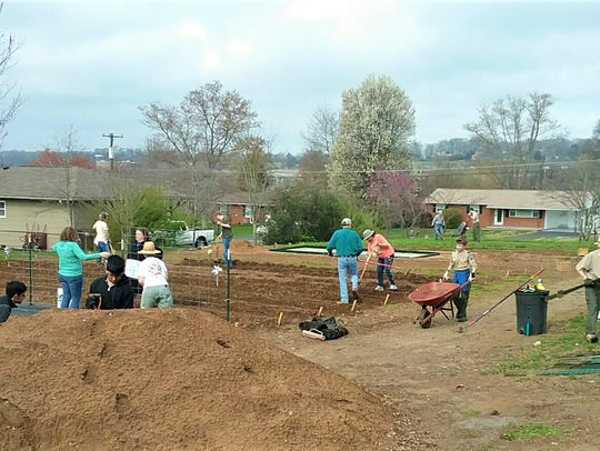 35 volunteers pitched in to prepare soil and erect