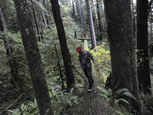 636152679035310825-State-Forest-Battle-Davi.jpg