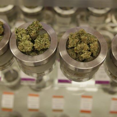 IMG_Legal_Marijuana-Oreg_2_1_G1B7R8PK.jpg_20150701 (2).jpg