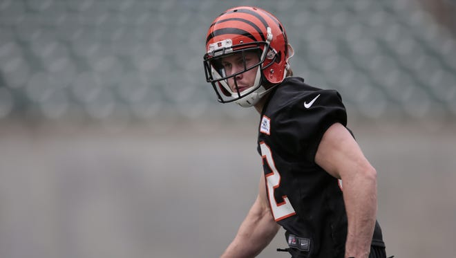 Bengals safety Clayton Fejedelem