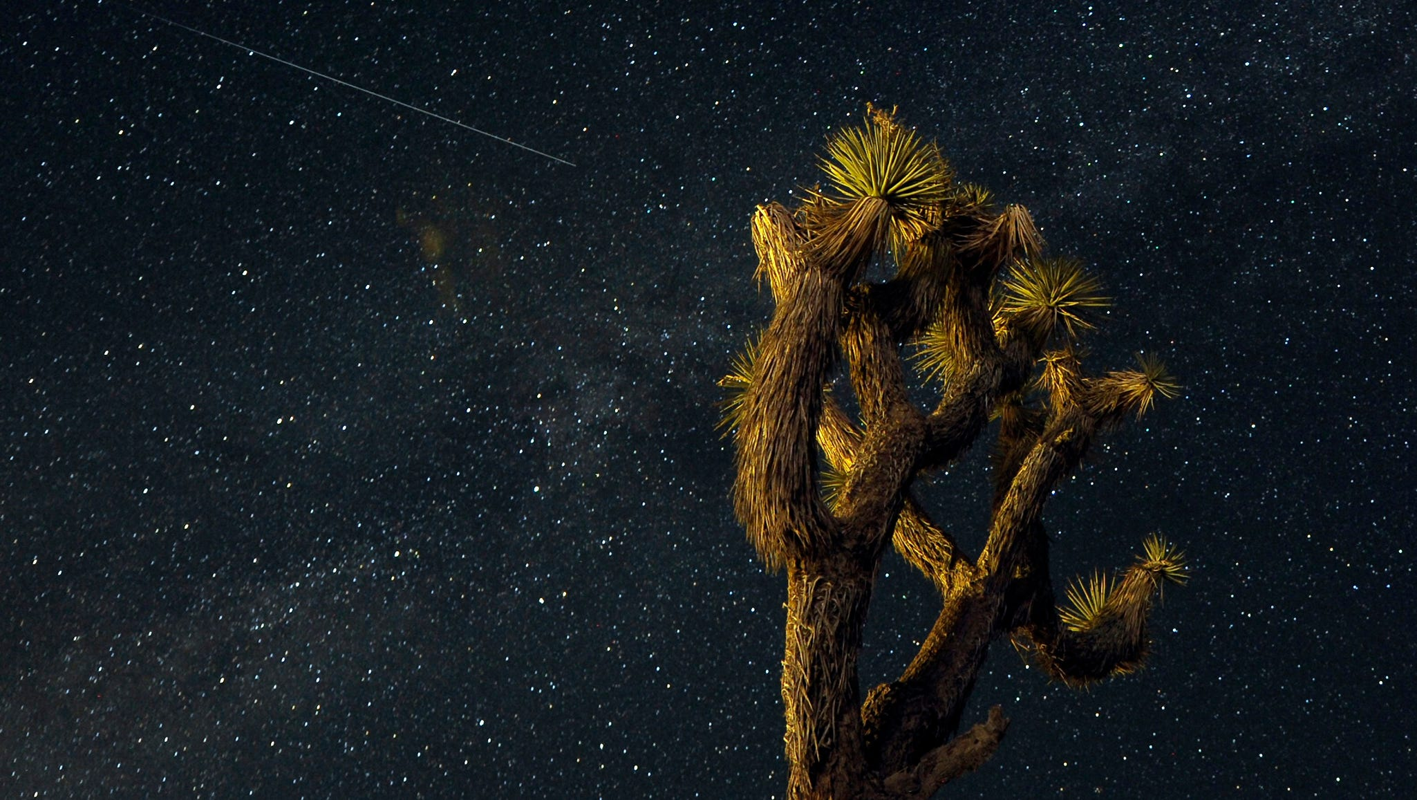 A meteor passes over the Mojave Desert in Landers, Calif.