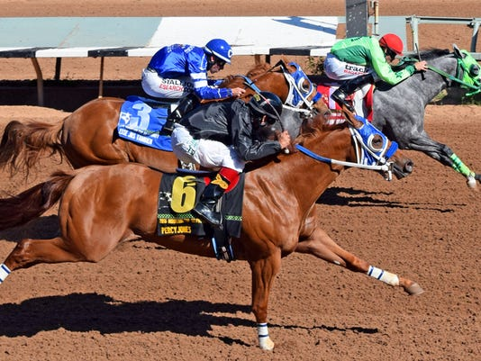 Running-Dragon-1-Mountain-Top-NM-Bred-QH-Futurity.jpg
